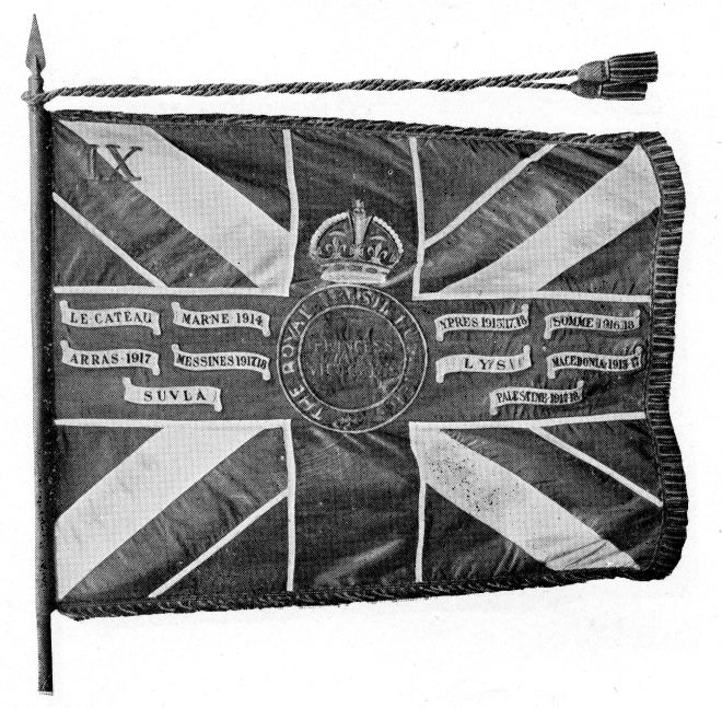 The King's Colour of the 9th (North Irish Horse) Battalion, Princess Victoria's (Royal irish Fusiliers)